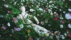 Woody went on another trip! (suzyhazelwood) Tags: funny lol mannequin daisy daisies long grass sleep flowers floral summer sony a6000 creativecommons
