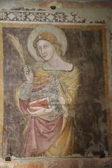 Bologna_Santo Stefano43