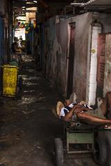_MG_0368 (Diego A. Assis) Tags: documental fotojornalismo africa bahia baiadetodosossantos brasil candomble comercio diegoassis escravos feia feiradesaojoaquim feiralivre fotografiapordiegoassis fotografo riodejaneiro salvador