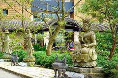 A DI DA PHAT QUAN THE AM BO TAT DAI THE CHI BO TAT GUANYIN KWANYIN BUDDHA 9170 (ketnoivietnam) Tags: amazing affectionate amitabha architecture art asia avalokitesvara awesome bangkok beautifull beijing palace bhutan bodhisattva bouddha buddha tooth relic temple buddhism buddhist china chinatown chua excellent fantastic flickraward gold golden guanyin hainan hdr history hong kong indian information japan korea kuanim kuanyin kwanyin laos laughing 佛 观音 観音 寺