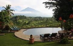 Pool with a view (Canis lupus alba) Tags: kawah ijen kawahijen indonesia java licin banyuwangi volcano caldera ijenresort