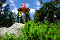 DSCF6103_EDIT (Miroslav Pivovarsky) Tags: vysoke tatry slovak slovakia natur nature outdoor fujifilm x70 mountains hiking hikings strbske pleso tarn sun day sunday