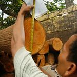 Measuring logs thumbnail