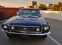 Rooftop Mustang (RZ68) Tags: ford mustang 1966 1965 66 65 cobvertible car muscle hot rod classic vintage automobile blue rooftop parking garage carshow old sacramento golden state warriors daily driver lg g6 cameraphone smartphone sunset buildings downtown