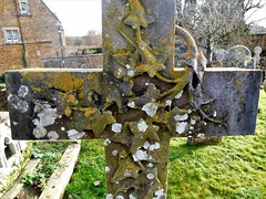 Stone Ivy! (springblossom3) Tags: cross ivy headstone churchyard cotswolds macro churches