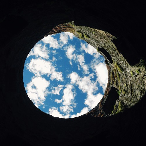 Earth or sky ?