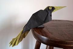 Crested Oropendola (Q. Trollip) (Helyades) Tags: crested oropendola cassique huppé trollip origami pli pliage fold carré square papier paper oiseau bird animal soie tissue