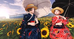Walking  a sunflower field. (кªոª.ϻєĿøĎɨє(I'm Japanese)) Tags: secondlife sl ss snapshot secondlifefashion secondlifeblog fashion blog blogger bloggers event events japonica kimono pose silveryk jadore barberyumyum セカンドライフ セカンドライフブログ セカンドライフファッション ファッション ファッションブログ ブログ ブロガー イベント ジャポニカ 着物 和 和装 和服 和物市