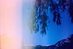 .the eternal silence of these infinite spaces. (Camila Guerreiro) Tags: film crossprocessed expiredfilm fuji leica 64t tungsten leicar4 seoul southkorea camilaguerreiro crossprocess expired lightleak mountains fujichrome