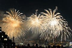 4th of July 2017 Macy's Fireworks-76 (Diacritical) Tags: brooklyn nycmacys nikond4 pattern 70200mmf28 30secatf71 july42017 85017pm f71 230mm 4thofjuly fireworks macysfireworks nyc night skyline