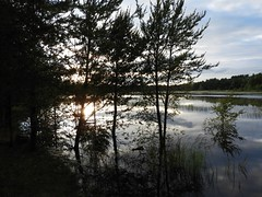 Breathe Easy (Chicago Man) Tags: waushara county wausharacounty wisconsin usa nature north northwoods scene woods forest pond lake water longlake johnwiwanski