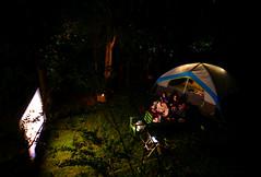 Front row seats (Grandpaparazzi) Tags: night sleepover movie tent backyard trees grass projector longexposure youngladies birthday toronto eastyorkactually dark