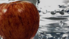 """Photo Series: Food Photography: """"More darkly composed"""" (Ken Whytock) Tags: food apple waterbottle bottle water red royalgala"""
