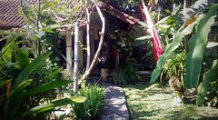 Private Seminyak villa garden, Bali (scinta1) Tags: indonesia bali seminyak villa garden pool green peaceful tranquil restful tropical trees palms leaves flowers bohemian private plants path entrance