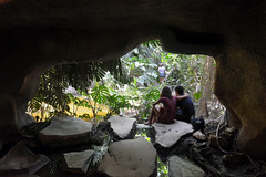 Secret Hidaway (Eddie C3) Tags: parisfrance vacationphotos botanicalgardens greenhouse jardindesplantes