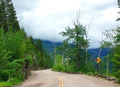 long & winding road (ekelly80) Tags: montana glaciernationalpark nationalparkservice nps june2017 roadtrip keisgoesusa optoutside findyourpark rockymountains mountains goingtothesunroad bikeride loop view scenery road curves winding trees forest green lines clouds sky