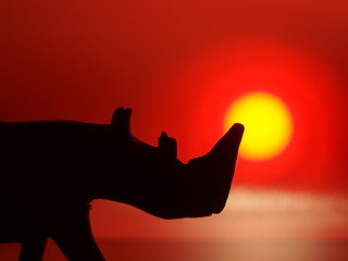 Rhinoceros silhoutted agains't the setting sun. (Silhoutte Macro Monday)
