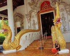 Wat Phra Singh, Chiang mai (Cleu Corbani) Tags: arquitectura templos mujer dorado wat thailandia unlugarenelemundo cultura religiones cleucorbani ensueño gente meditacion