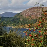 Looking over Loch Carron thumbnail