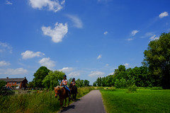 Pony ride near Twiske (PaulHoo) Tags: fujifilm x70 landscape twiske wideangle 2017 nature holland netherlands pony recreation child road path vanishing point green sky clouds