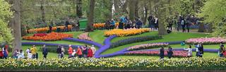 Giardini del Keukenhof - Olanda