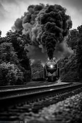 The J and Blue Ridge (benpsut) Tags: 611 bw blackandwhite blueridgedistrict flyingj nw nw611 nsblueridge norfolkandwestern thej excursion plume railroad smoke smokeplume steam steamengine steamexcursion trains