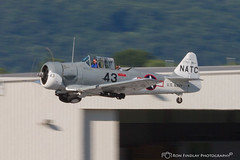 navytrainer_flight1 (ronfin44) Tags: wwii wwiiweekend wwiiairshow war airplane aircraft soldiers allies allied axis german ss nazi yankee lady b17 b25 b24 liberator panchito russians russian ruskie british paratrooper army navy marines airforce veterans veteran uniform medals awards troops