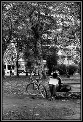 (Caro Rolando) Tags: blancoynegro monocromo monocromatico gamadegrises sincolor buenosaires argentina bici bicicleta bicicletas otoño hojassecas descanso pausa break blackandwhite frio diagris díafrio