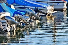 En reposo (Franco D´Albao) Tags: francodalbao dalbao nikond60 motores motors fueraborda reflejos reflections mar sea barcos boats puerto port bouzas vigo