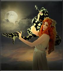 India Iracema (jaci XIII) Tags: índia mulher pessoa animal cobra réptil lua india woman person snake reptile moon