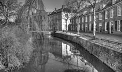 Buitensingel (Jan Kranendonk) Tags: amersfoort utrecht holland gracht canal dutch europe trees water stad binnenstad