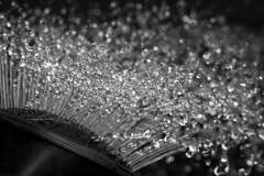 Drips, Drops and Splashes... (Kaarel Kaldre) Tags: macromondays dripsdropsandsplashes tilk vesi water drop makro macro mustvalge blackandwhite noiretblanc outdoor