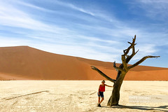 Petrified Forest, Deadvlei, Namibia, Africa (Nick Brundle - Photography) Tags: africa baretree clearsky day deadplant deadvlei desert drought environment heat landscape namibdesert namibnaukluftnationalpark namibia nationalpark naturalparkland nature naturereserve oneperson orange saltbasin silhouette smiling solitude sossusvlei southernafrica sunlight sunny tourist tranquility travel traveldestinations tree weather women unescoworldheritagesite gettyimages girl