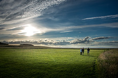 DSC_4479 (Evo800) Tags: walks cooper sky grass cloulds sunset water forth scotland nikon d610 deer skylark