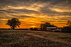 The farm (Peter Leigh50) Tags: leicestershire farmland farm trees sky skyscape clouds sunrise landscape rural countryside uk august early morning