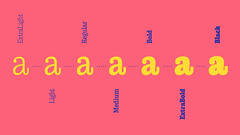 New! Walter (TypeTogether) Tags: typetogether wwwtypetogethercom teotuominen newrelease slabserif