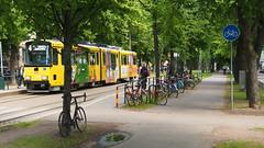 2017 Bike 180: Day 152, July 14 (olmofin) Tags: 2017bike180 finland bicycle tram streetcar raitiovaunu ratikka spåra spora polkupyörä munkkiniemi munkkiniemen puistotie