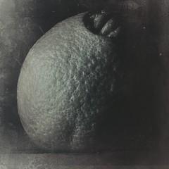 Alien-10487 (Poetic Medium) Tags: shadows orange square produce stilllife kitcamghostbird mextures ipod food