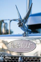Flying Goddess (Eric Arnold Photography) Tags: peterbilt pete peterbuilt semi truck largecar bigrig hood ornament chrome custom huron sd