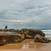 Rocky Daybreak Seascape with Photographers