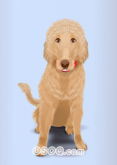 910001 (Osoq.com) Tags: wwwosoqcom pet animal caricature