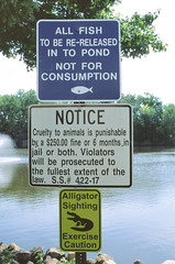 Re-Release (C R Hoetzl) Tags: duckpond secaucus grammar newjersey hudsoncounty sign signs heretherebealligators angling fishing