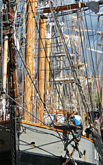 L2017_2279 - A Forest of Masts - Canning Dock - Liverpool (www.jhluxton.com - John H. Luxton Photography) Tags: sail sailingship tallship barque wwwjhluxtoncom johnhluxtonphotography liverpool merseyside canningdock england uk ship portofliverpool 2017 merseyriverfestival2017 ships earlofpembroke