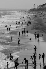 Coastal Monochrome (Robert Borden) Tags: bw monochrome silhouettes blackandwhite blackwhite ocean seaside sea shore waves people goodlight huntingtonbeach coast california socal westcoast canonrebel canonphotos canonusa canonphotographer