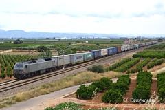 333-306 ROSCO (ɢ. ʙᴇʀᴇɴɢᴜᴇʀ [ ō-]) Tags: 333 333306 rosco tren ferrocarril paisaje ffcc railway railroad teco locomotora