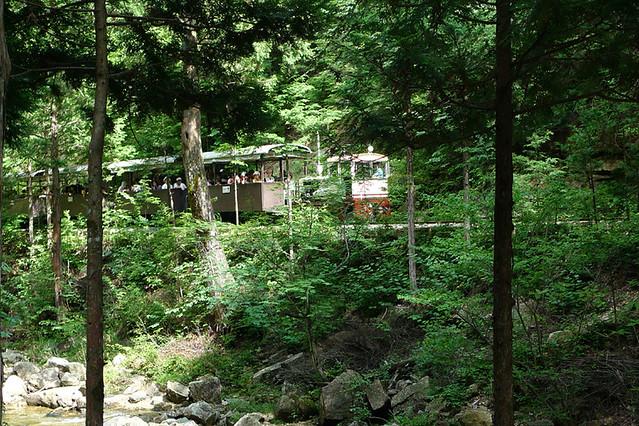 木々の切れ間から 対岸の森林鉄道を眺めることも|赤沢森林資料館