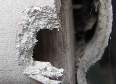 asbestos 4 (Asbestos Removal Guide) Tags: asbestos asbestosdisposal asbestosremovals asbestossitedemolition asbestostesting