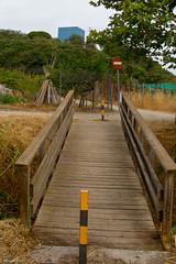 08072017-_POU7966 (Salva Pou Fotos) Tags: 2017 ajuntament fradera grupsenderista observatorifauna pont aiguamolls barberàdelvallès caminada pou