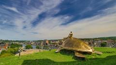 Our Turtle -Belgium (YᗩSᗰIᘉᗴ HᗴᘉS +6 500 000 thx❀) Tags: turtle metal gold namur belgium hensyasmine wallonie belgique bélgica sky bluesky 7dwf