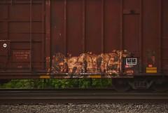 IRONY (TheGraffitiHunters) Tags: graffiti graff spray paint street art colorful freight train tracks benching benched boxcar irony ribbet